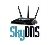 SkyDNS для роутеров
